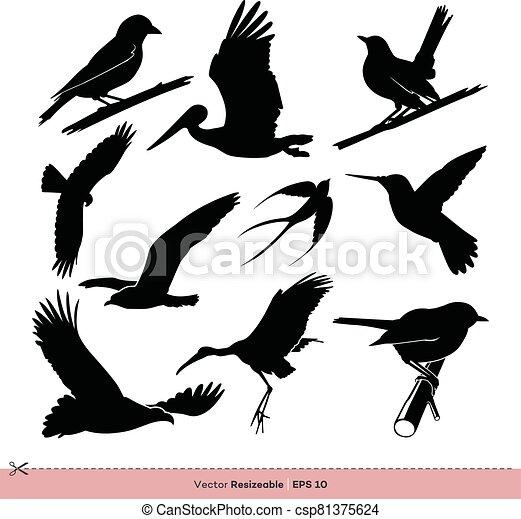 gabarit, conception, ensemble, vecteur, silhouette, illustration, oiseau - csp81375624