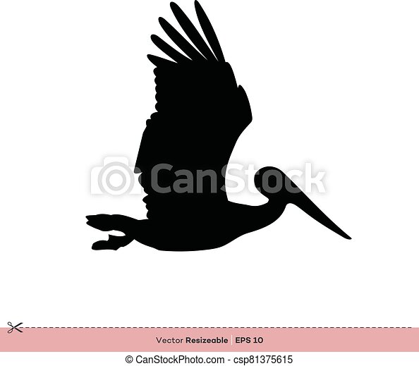 gabarit, -, conception, vecteur, silhouette, logo, pélican, illustration, oiseau - csp81375615