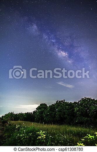 galaxy milky way in night sky - csp61308780