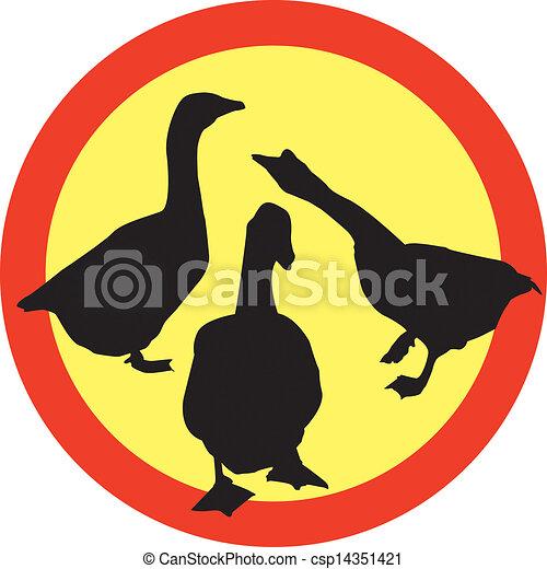 Tres gansos ilustrados - csp14351421