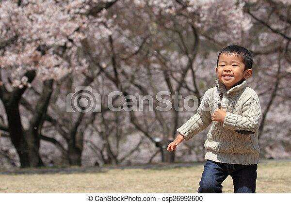 garçon, cerise, japonaise, années, fleurs, (3, old) - csp26992600