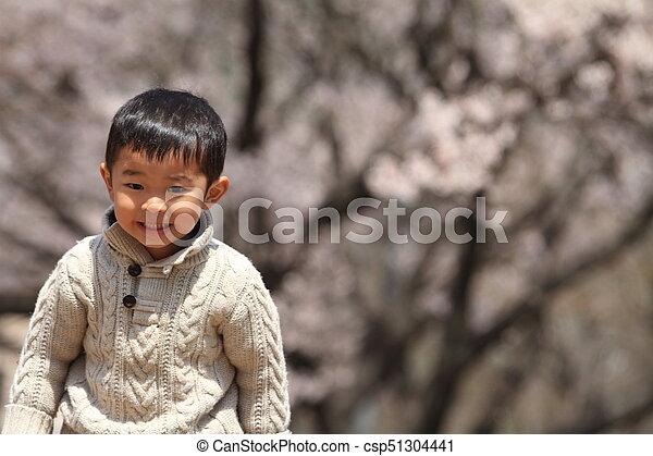 garçon, cerise, japonaise, années, fleurs, (3, old) - csp51304441