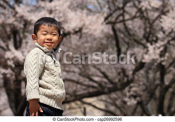garçon, cerise, japonaise, années, fleurs, (3, old) - csp26992596