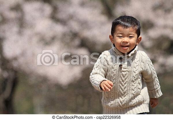garçon, japonaise, fleurs, cerise - csp22326958