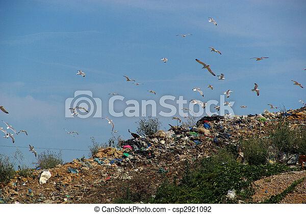 garbage dump 08 - csp2921092