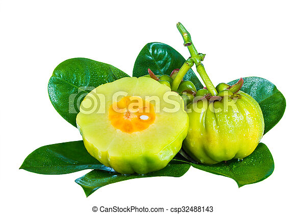 Garcinia Cambogia Fruits On Leaves Isolated On White Background