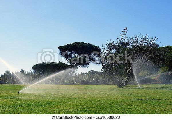 Garden automatic irrigation - csp16588620