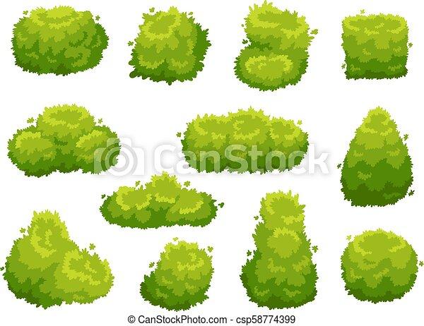 Garden bush. Green garden vegetation bushes. Cartoon shrubs for decorate landscape vector set - csp58774399