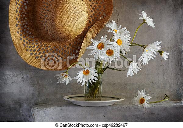 Garden Daisies - csp49282467