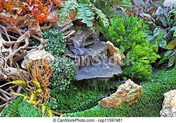 Garden detail - csp11597481