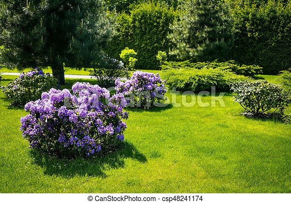 hermosos diseños de patio con jardín Paisaje En El Jardn El Camino En El Jardn Hermoso Diseo