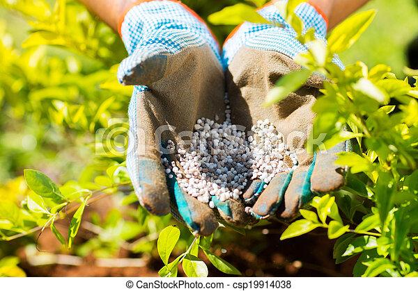 garden fertilizer - csp19914038