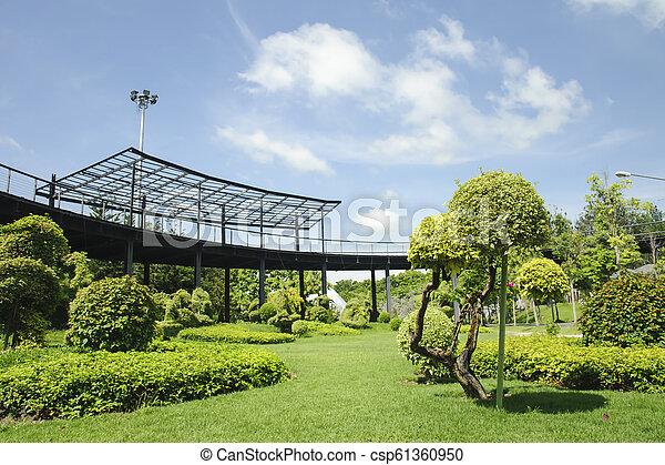 Garden in a sunny day - csp61360950
