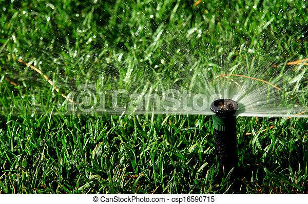 Garden irrigation system - csp16590715