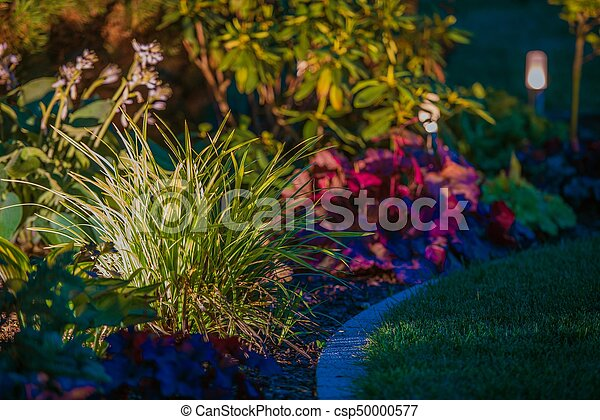 Garden Night Time Lighting - csp50000577