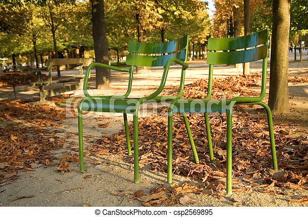 garden., parisiense, sillas, parque, parís, luxemburgo, paris., otoño, francia, típico - csp2569895