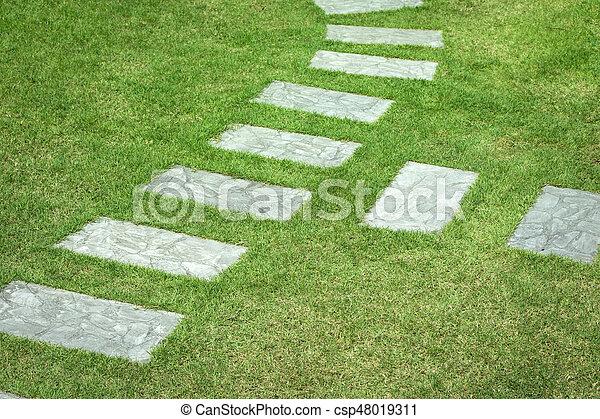 Garden path - csp48019311