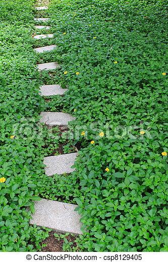 garden path - csp8129405