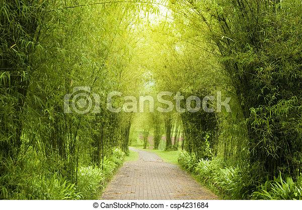 Garden Path - csp4231684