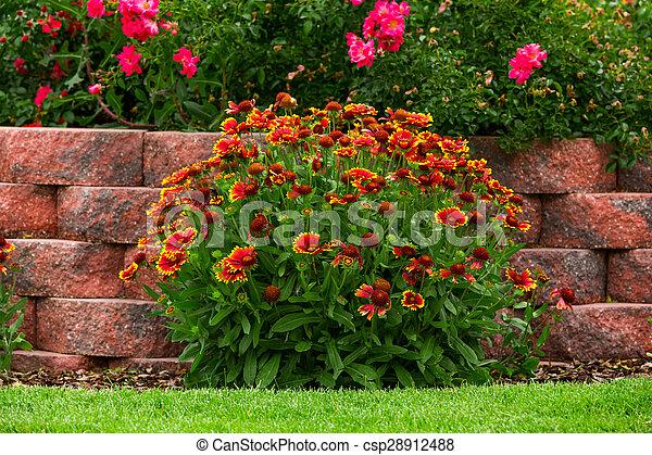 Garden - csp28912488