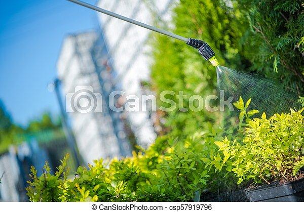 Garden Plants Insecticide - csp57919796