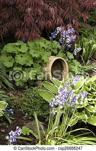 Garden plants - csp26888247