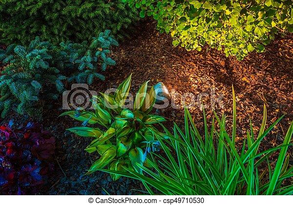 Garden Spot Illumination - csp49710530