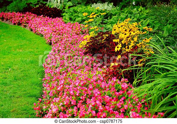 Garden - csp0787175