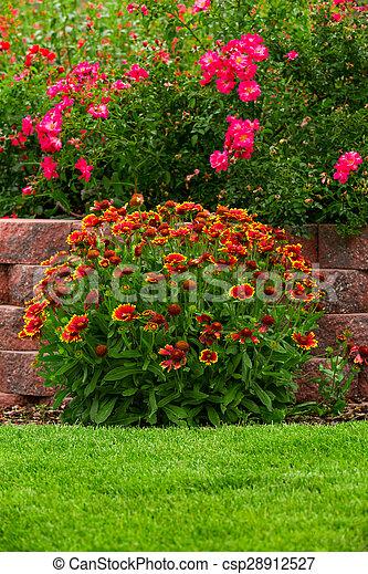 Garden - csp28912527