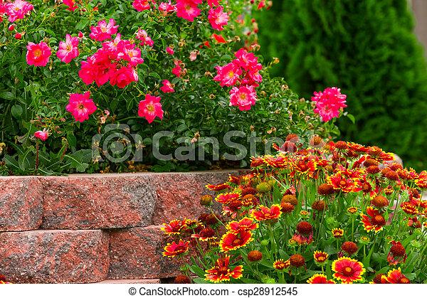 Garden - csp28912545