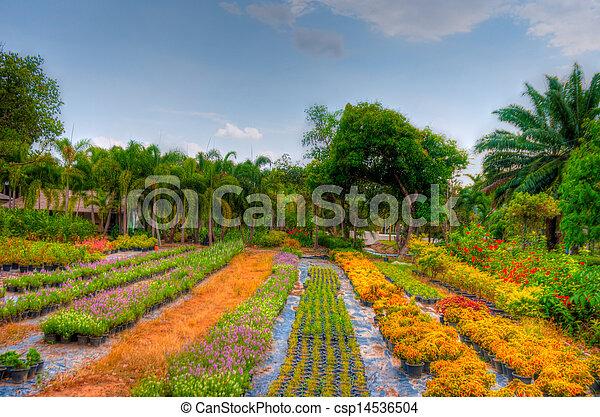 Garden - csp14536504