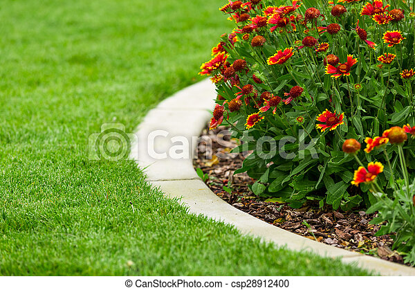 Garden - csp28912400