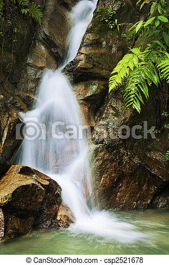 Garden waterfalls. - csp2521678
