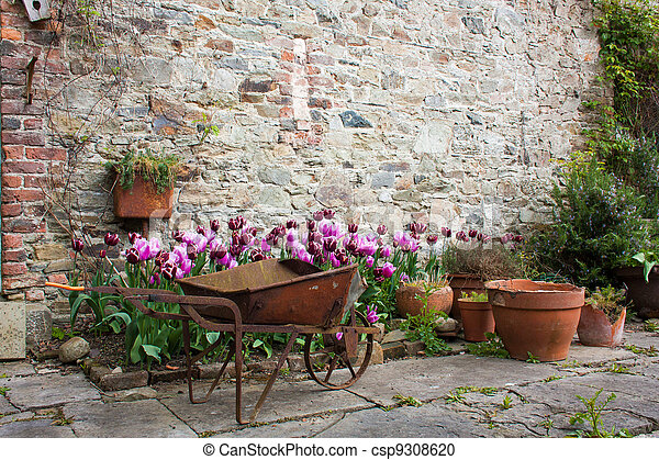 Garden with tulips and orange flower pots and a wheelbarrow - csp9308620
