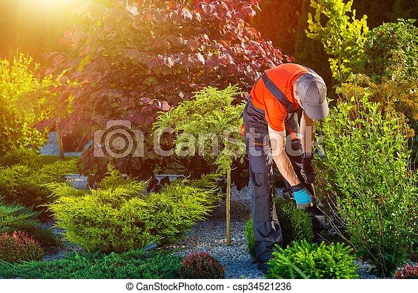 Gardener Garden Works - csp34521236