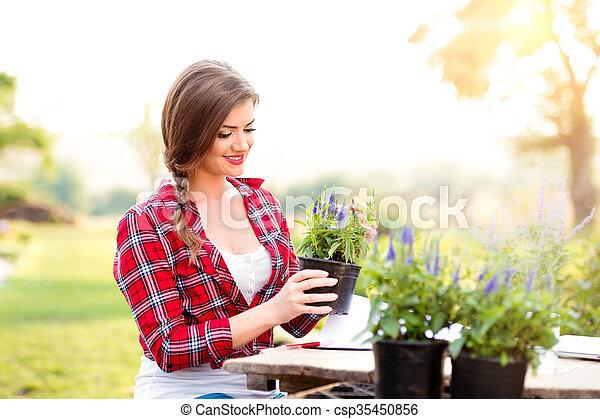 Gardener holding seedling in flower pot, green sunny nature - csp35450856