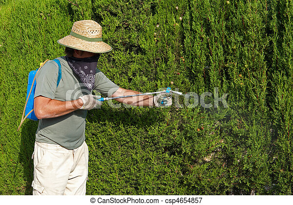 Gardener spraying pesticide - csp4654857