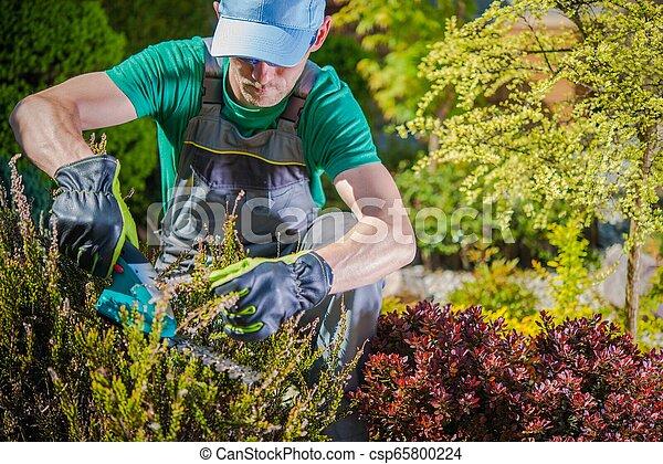 Gardener Working in a Garden - csp65800224