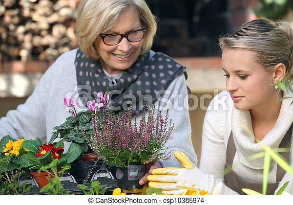 Gardening - csp10385974