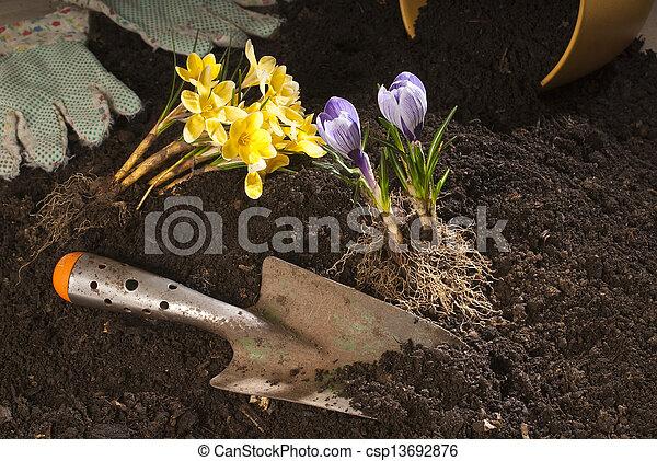 gardening - csp13692876