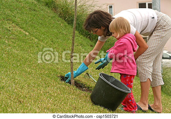 Gardening - csp1503721