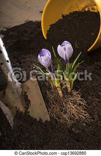 gardening - csp13692880