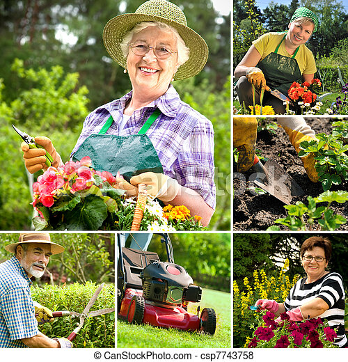gardening - csp7743758