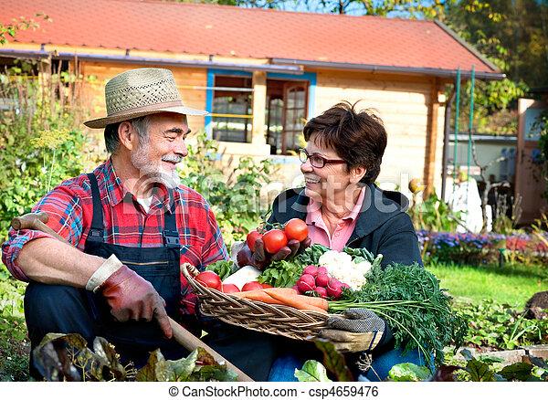 Gardening - csp4659476