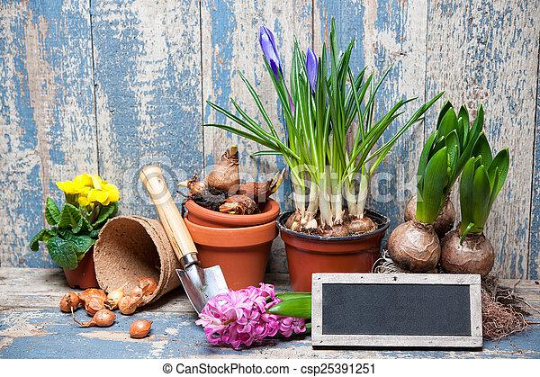Gardening - csp25391251