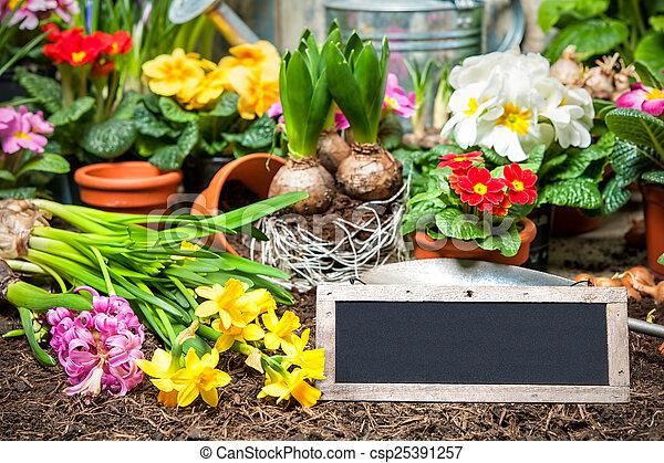 Gardening - csp25391257