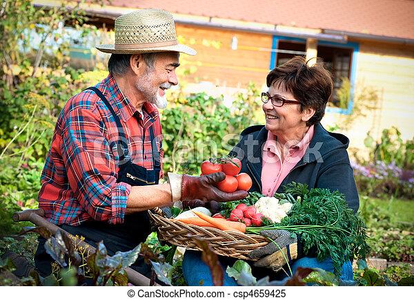 Gardening - csp4659425