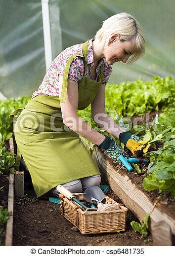 Gardening - csp6481735