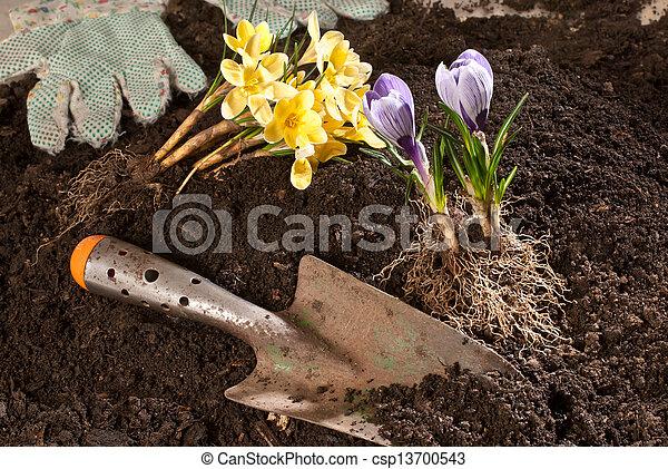 gardening - csp13700543