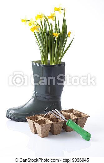 gardening  - csp19036945